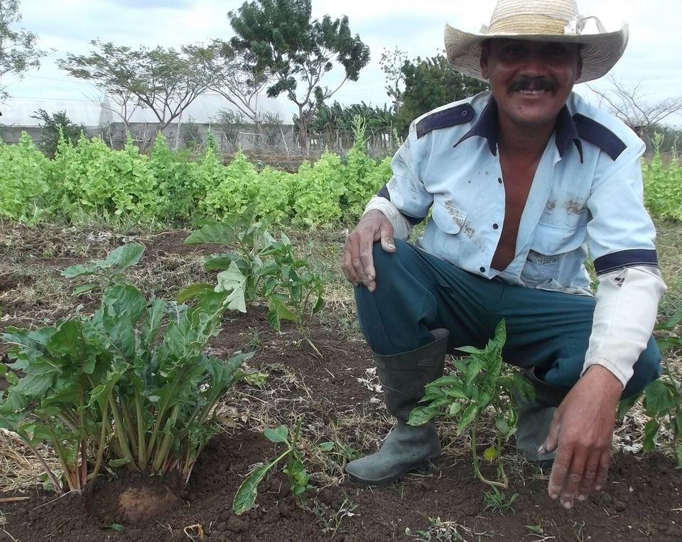 CERAI inicia novedoso proyecto integrador en Cuba