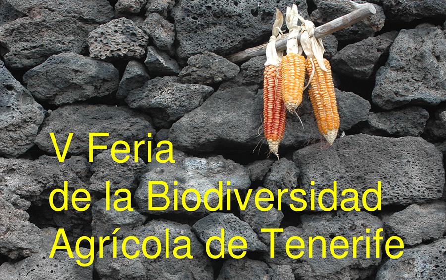 V Feria de la Biodiversidad Agrícola de Tenerife