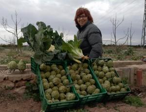 agroecología formación