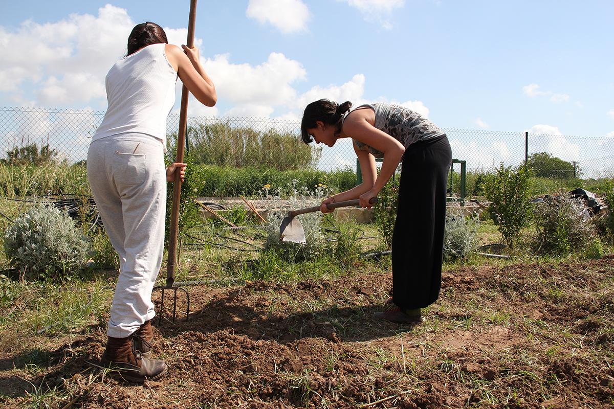 Curso Internacional de Agroecología, Soberanía Alimentaria y Cooperación al Desarrollo Rural en Tenerife