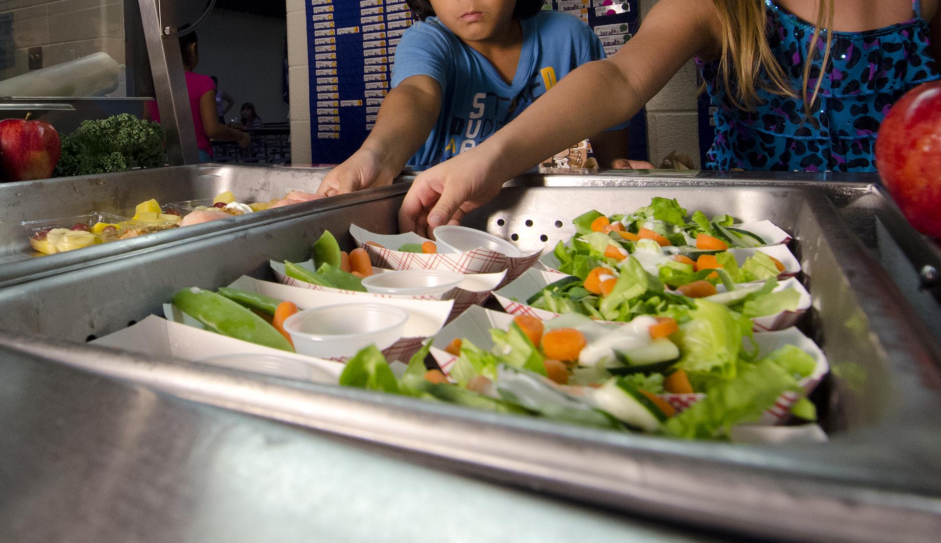 Jornada \'Mejorar la alimentación en la escuela: comedores ...
