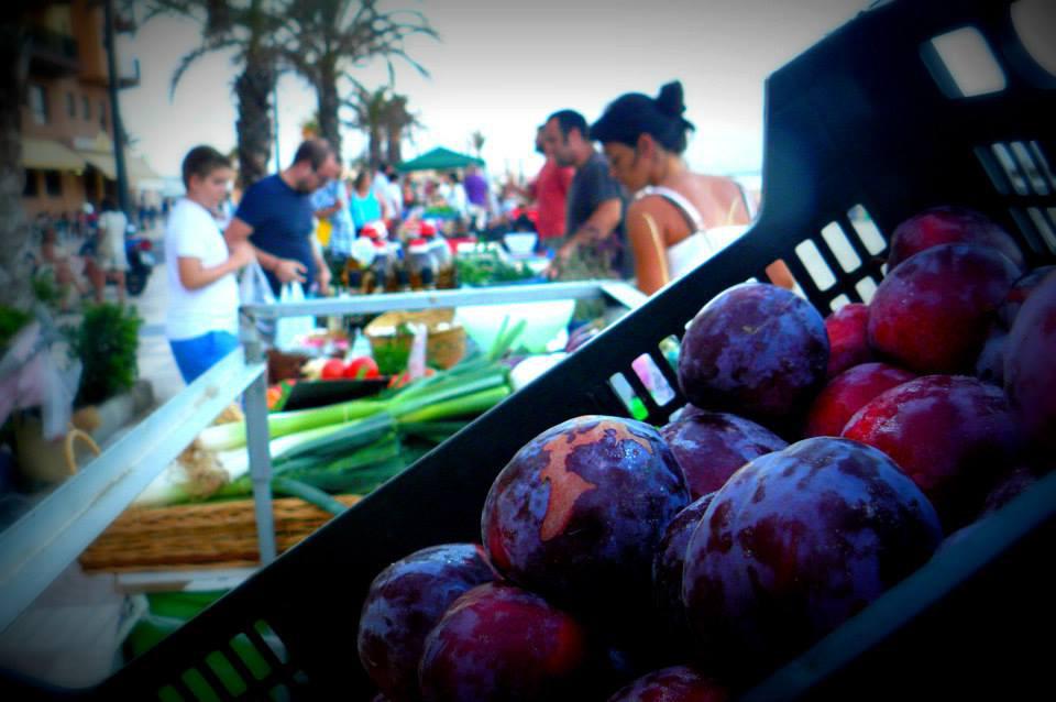Curso de Empresa Social y Comercialización Agroecológica para colectivos en riesgo de exclusión