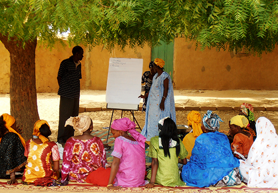 Publicación de TdR para la contratación de varias asistencias técnicas en Mauritania