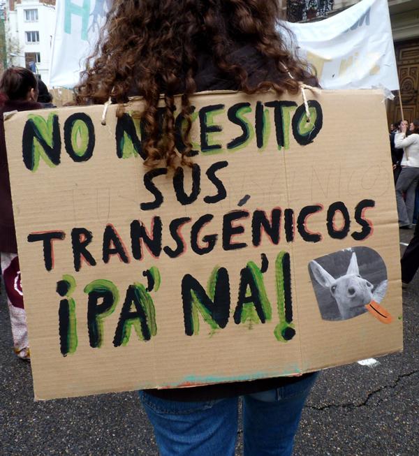 Bruselas autoriza la entrada de 17 nuevos transgénicos con destino alimentario