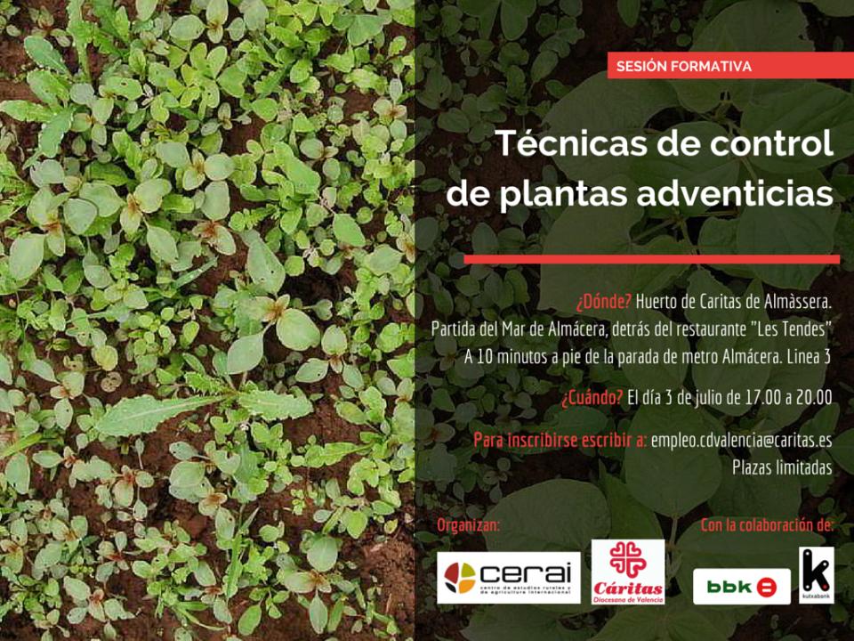 CERAI y Cáritas explican \'Técnicas de control de plantas adventicias ...