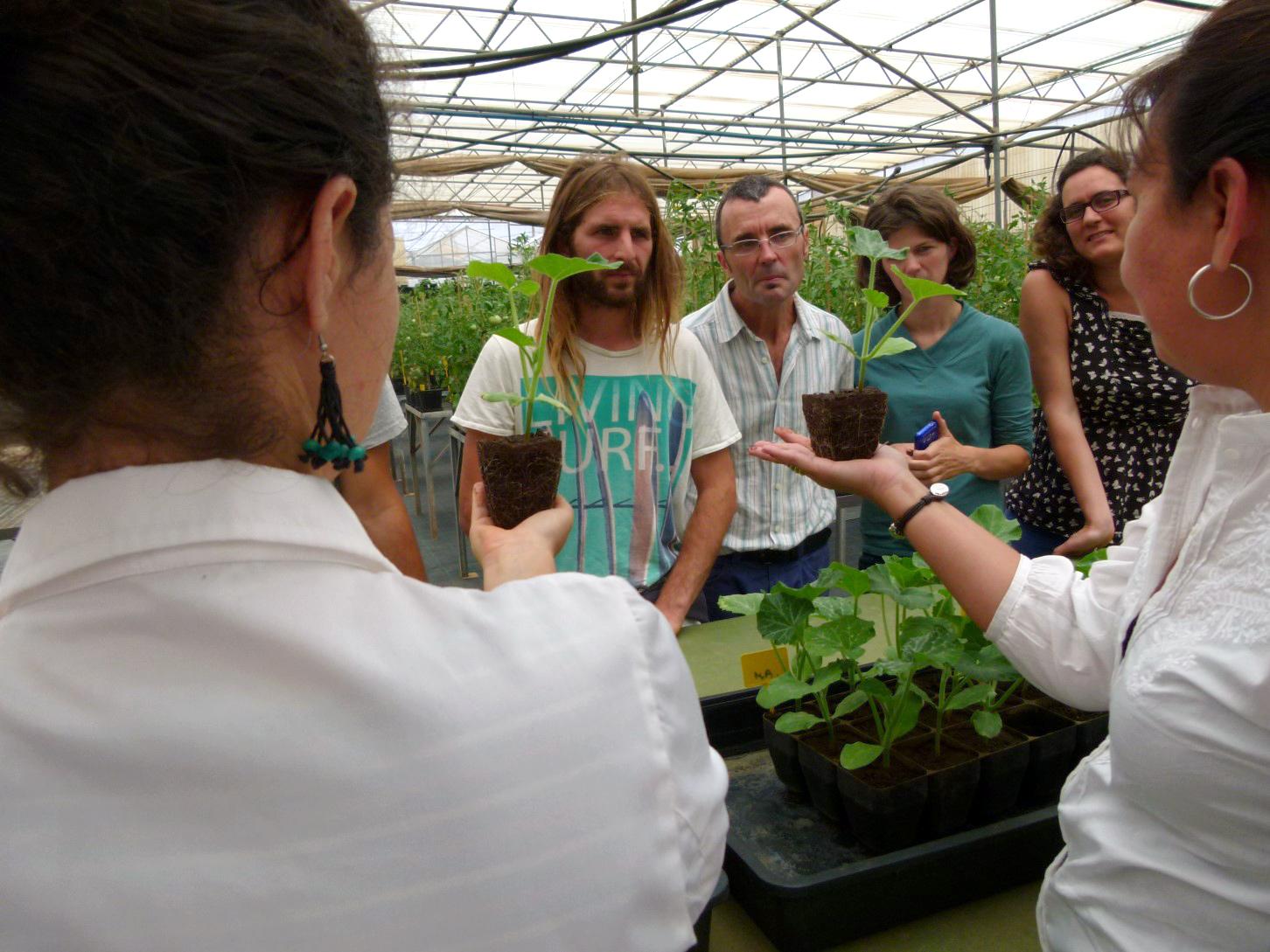 Hemos impartido el curso online 'La actividad biológica de los suelos'