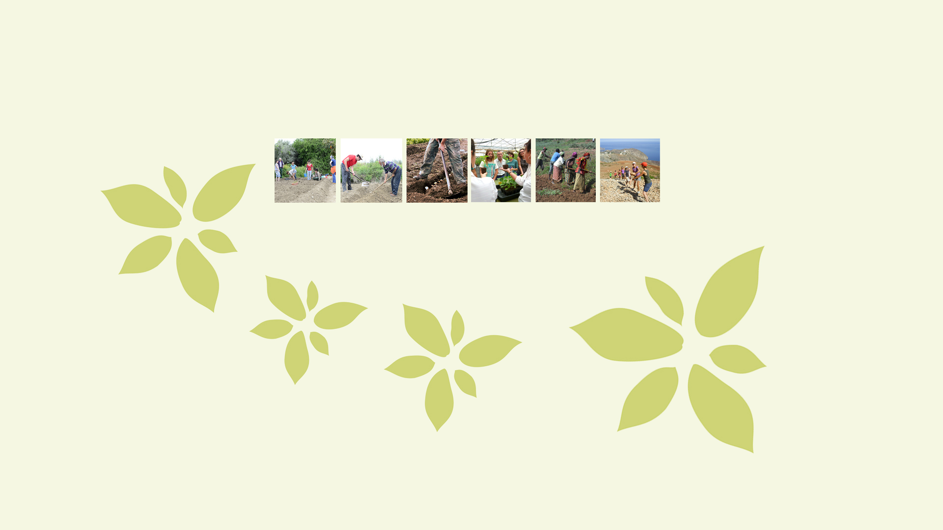slide curso agroecologia 2015-2016