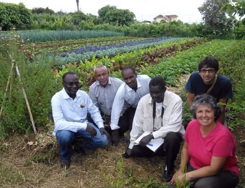 Miembros de la delegación mauritana en la visita a la finca familiar ecológica de Doña Rosa, en Tenerife