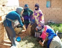 empleo-cooperacion-sahara