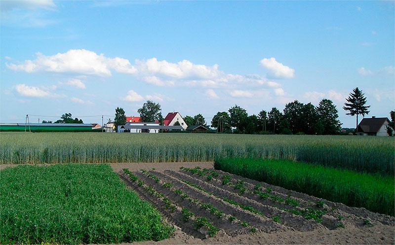 CERAI apoya una petición al Parlamento Europeo sobre la preservación de las tierras agrícolas europeas