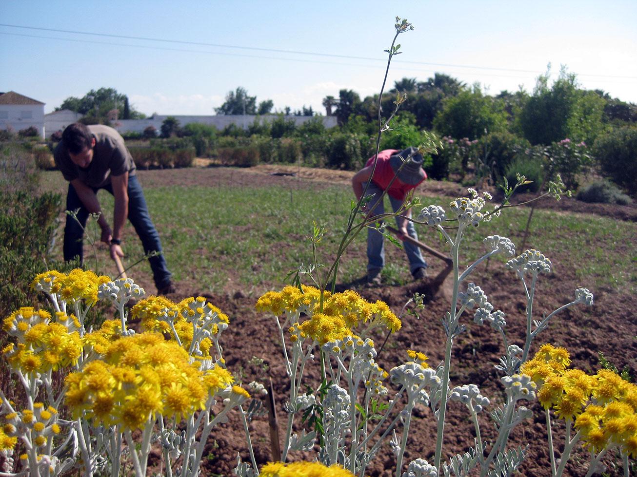 FIARE Banca Etica: una apuesta decidida por la agroecología y el desarrollo rural