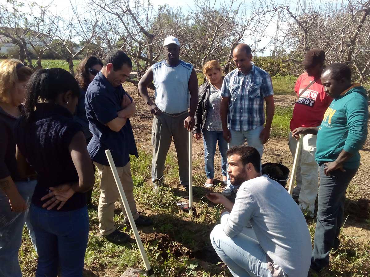 CEPAIM y CERAI ofrecen un curso sobre huerto ecológico destinado a personas inmigrantes