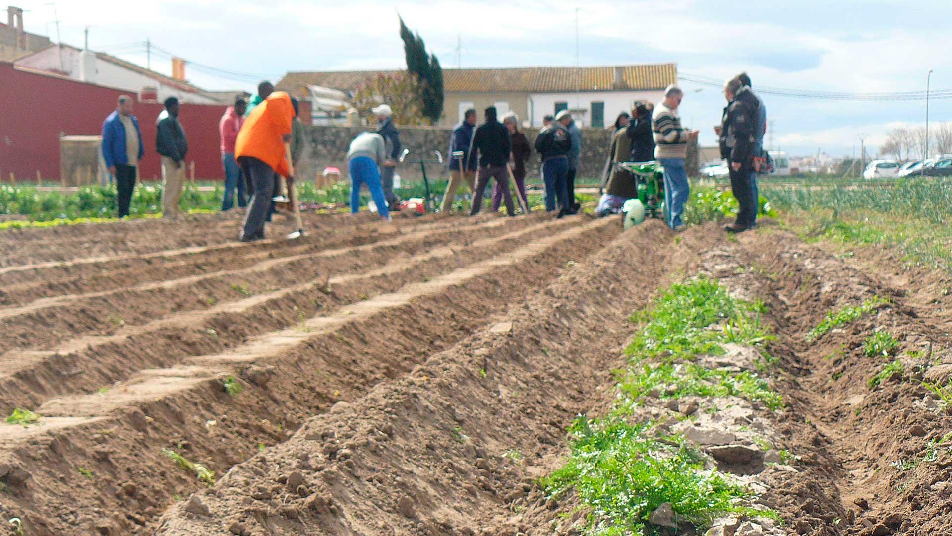 Curso modular: Bases de la Producción Ecológica y la Agroecología