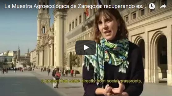 La Muestra Agroecológica de Zaragoza: recuperando espacios públicos- Zaragoza (España)