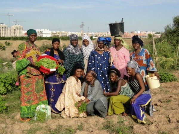 """La Fundación La Caixa premia el proyecto de CERAI """"Mujeres Africanas en l'Horta"""""""