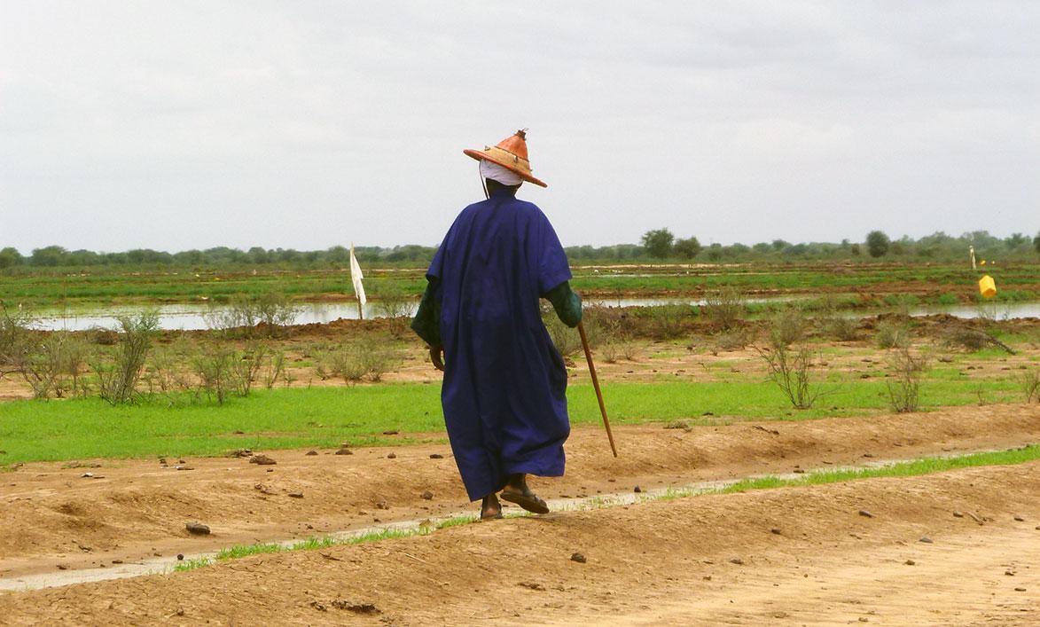 TDR-Senegal-Podor