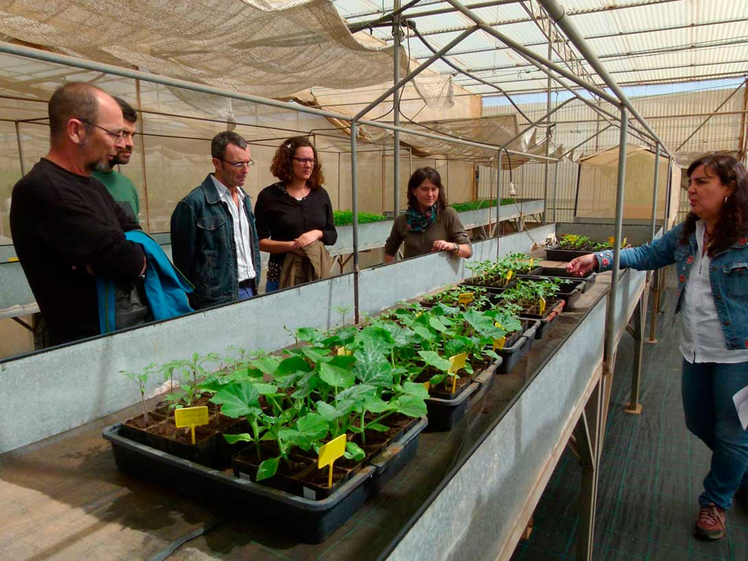 La Práctica Agroecológica en el Desarrollo Rural