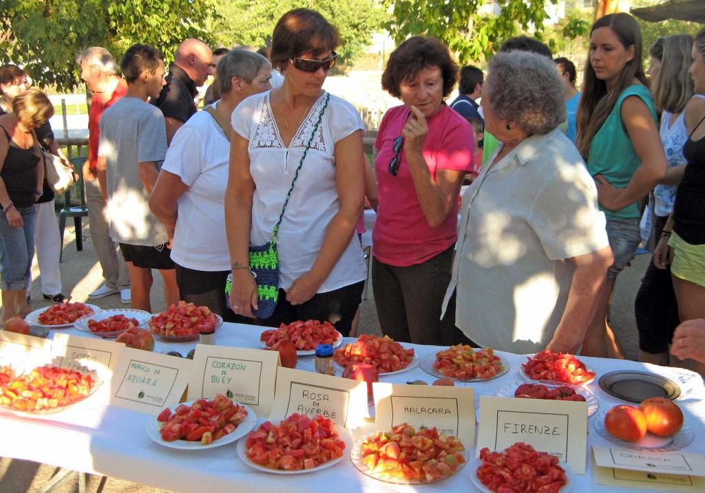 degustación-variedades-tomate