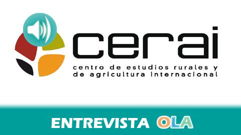 Entrevista en Onda Local de Andalucía sobre nuestro trabajo en Sahara