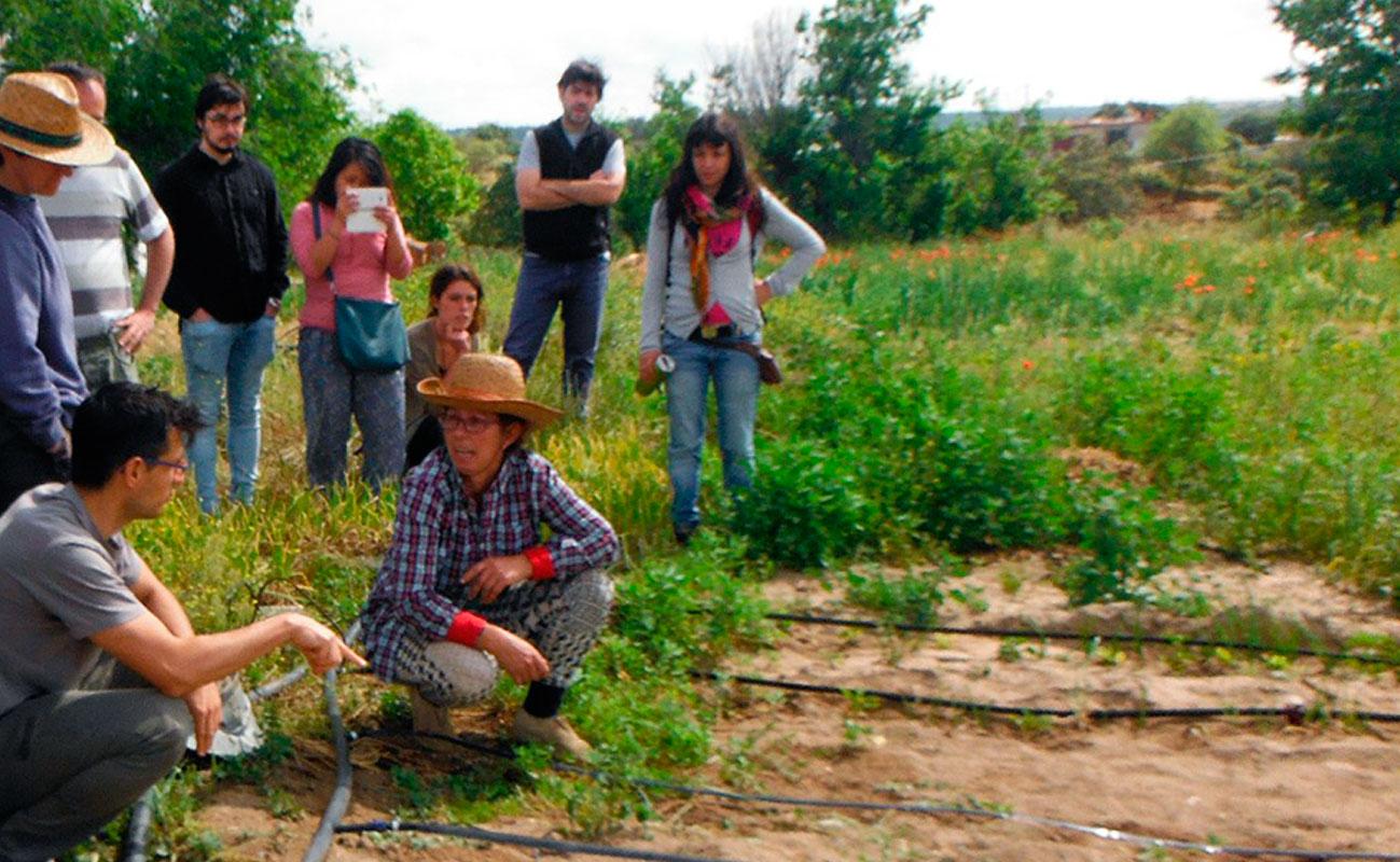 Curso Internacional de Ecología Urbana