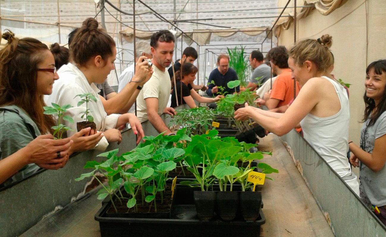 Estrategias para una transición agroecológica en cultivos mediterráneos