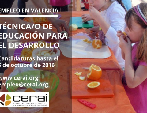 Trabajo En Comedores Escolares - Hogar Y Ideas De Diseño - Desig.co