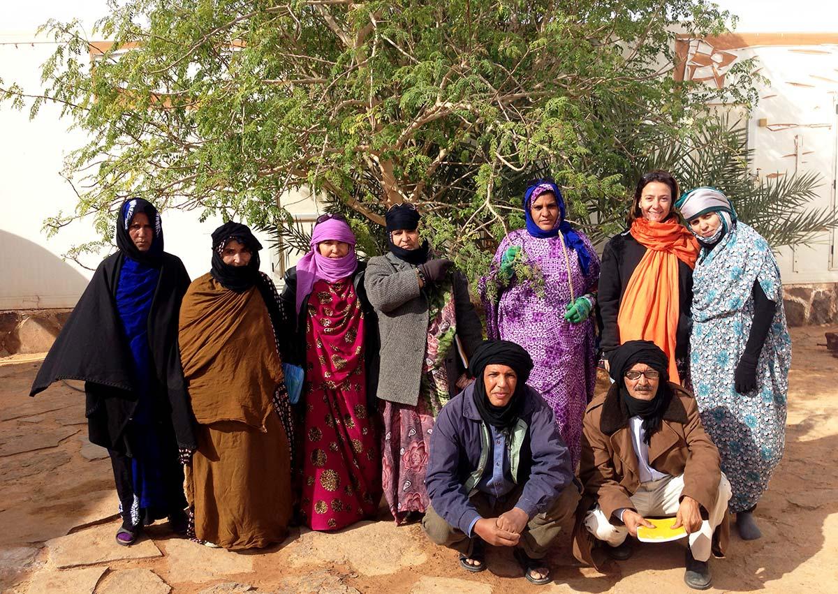 Actividades de sensibilización en los campamentos saharauis sobre los beneficios de la moringa