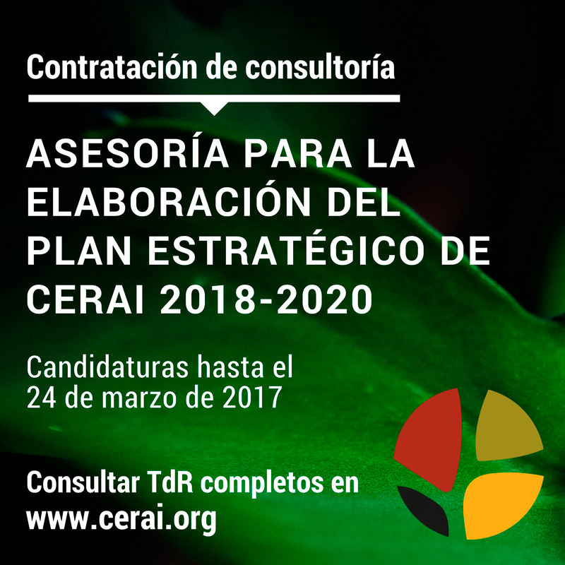 TDR-Consultoría-PE-CERAI