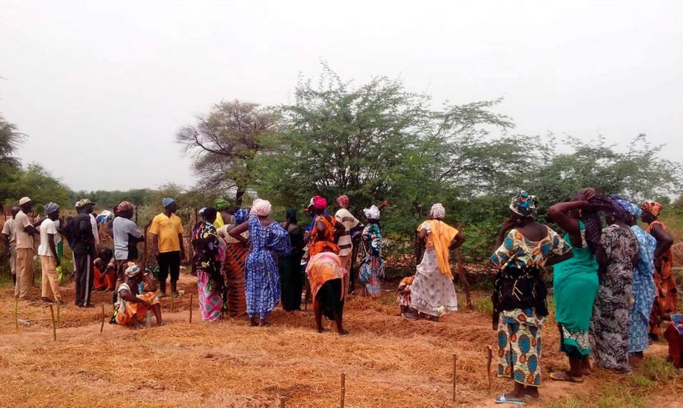 trarza-Mauritania-huertos-agroecológicos