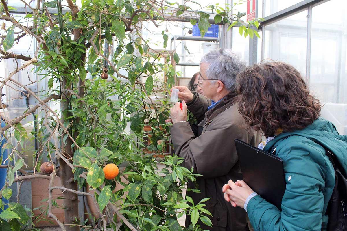 La Práctica agroecológica. Modelos para un Desarrollo Rural Sostenible