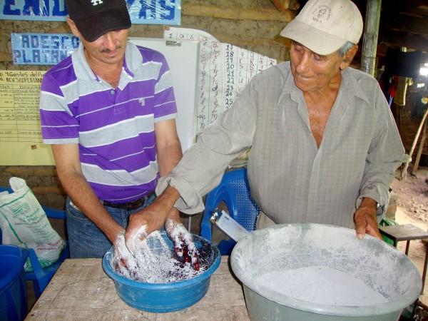 Semillas criollas para la Soberanía Alimentaria en el Salvador
