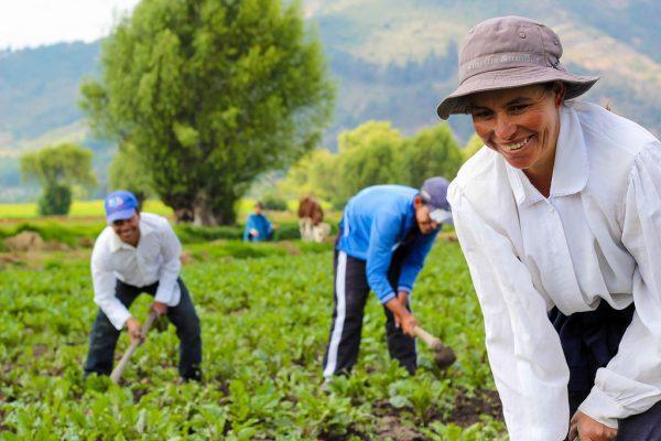 Nos adherimos a la campaña por la Declaración del Decenio de la Agricultura Familiar