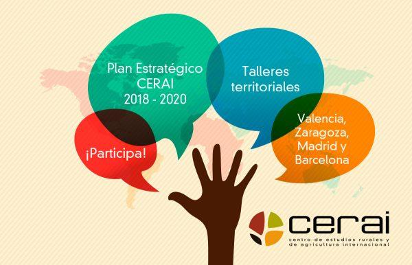Talleres participativos para la elaboración del nuevo Plan Estratégico de CERAI
