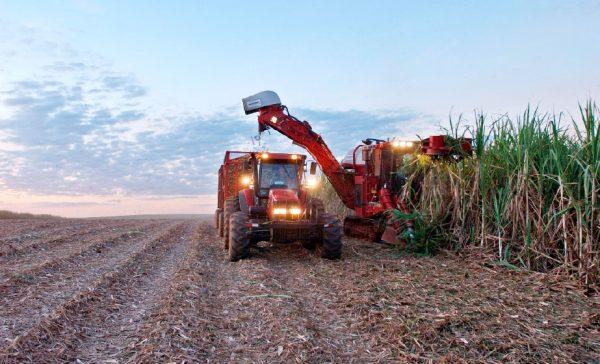El acceso a la tierra en América Latina. Informe continental del FMAT 2016