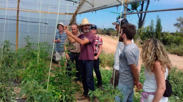 CERAI emprende la dinamización de los huertos agroecológicos municipales de Tudela, en Navarra