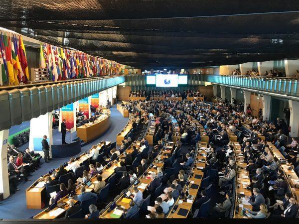 Asistimos a la 46 reunión del Comité de Seguridad Alimentaria de la FAO
