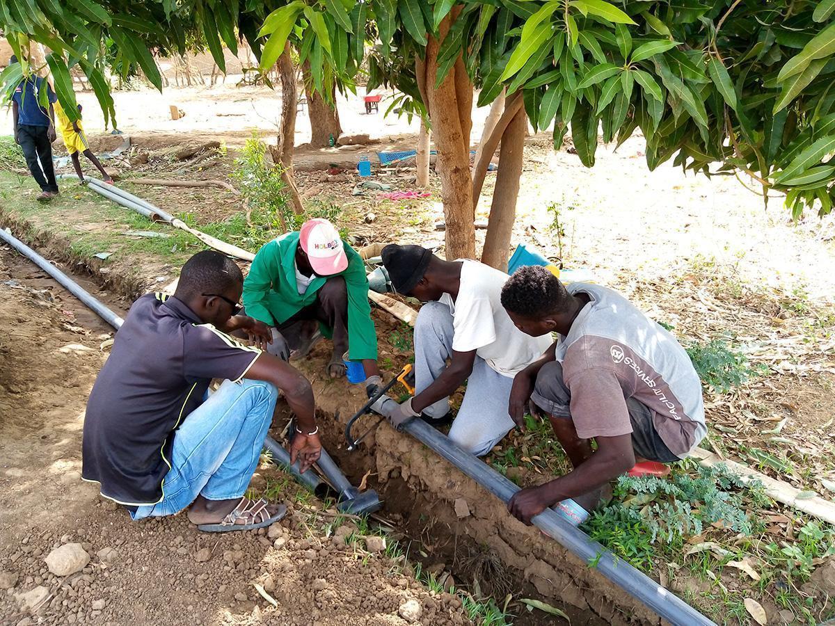Promovemos la instalación del sistema de riego californiano en Mali