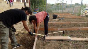 Proyecto: Sembra verdura, arreplega cultura. CERAI
