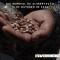 Comunicado de Amigos de la Naturaleza y CERAI con motivo del Día Mundial de la Alimentación
