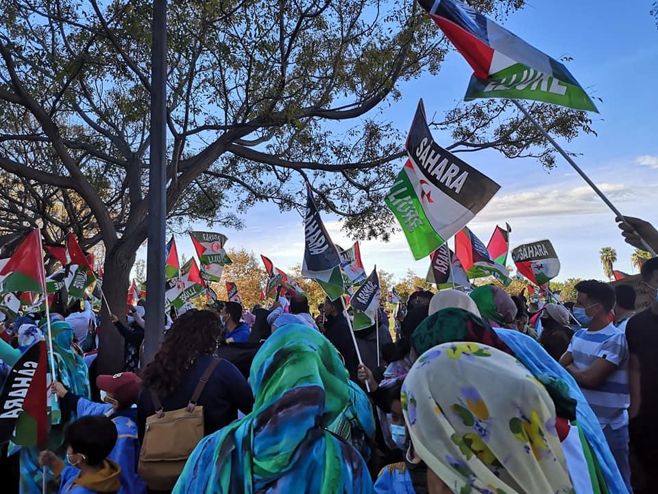 Comunicado de CERAI ante la situación en el Sáhara Occidental
