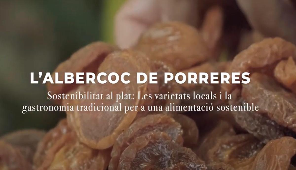 Varietats locals: l'albercoc de Porreres (Sostenibilitat al Plat-Illes Balears)