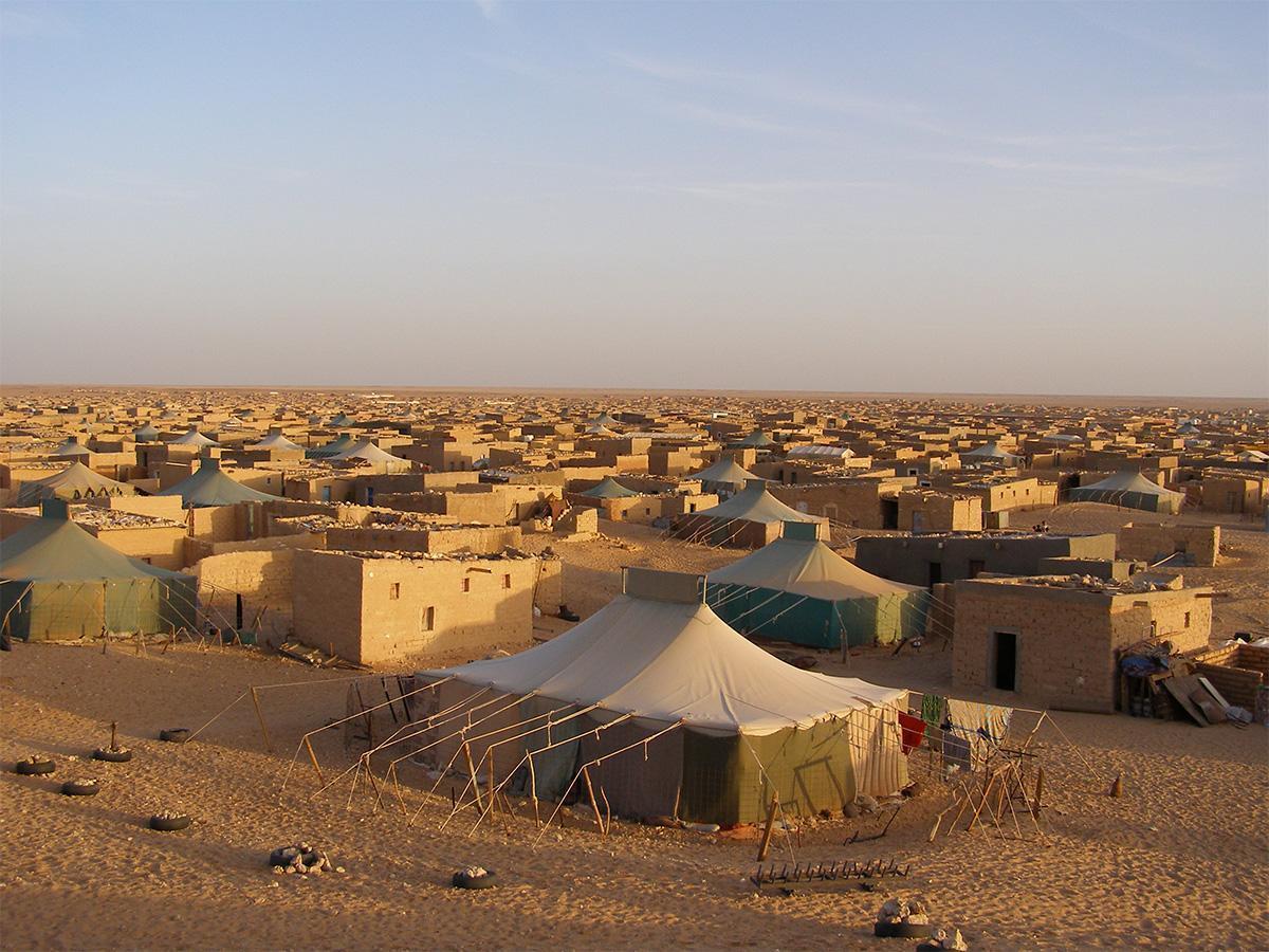 Las ONG que trabajamos con población refugiada saharaui pedimos una solución pacífica en el Sáhara Occidental