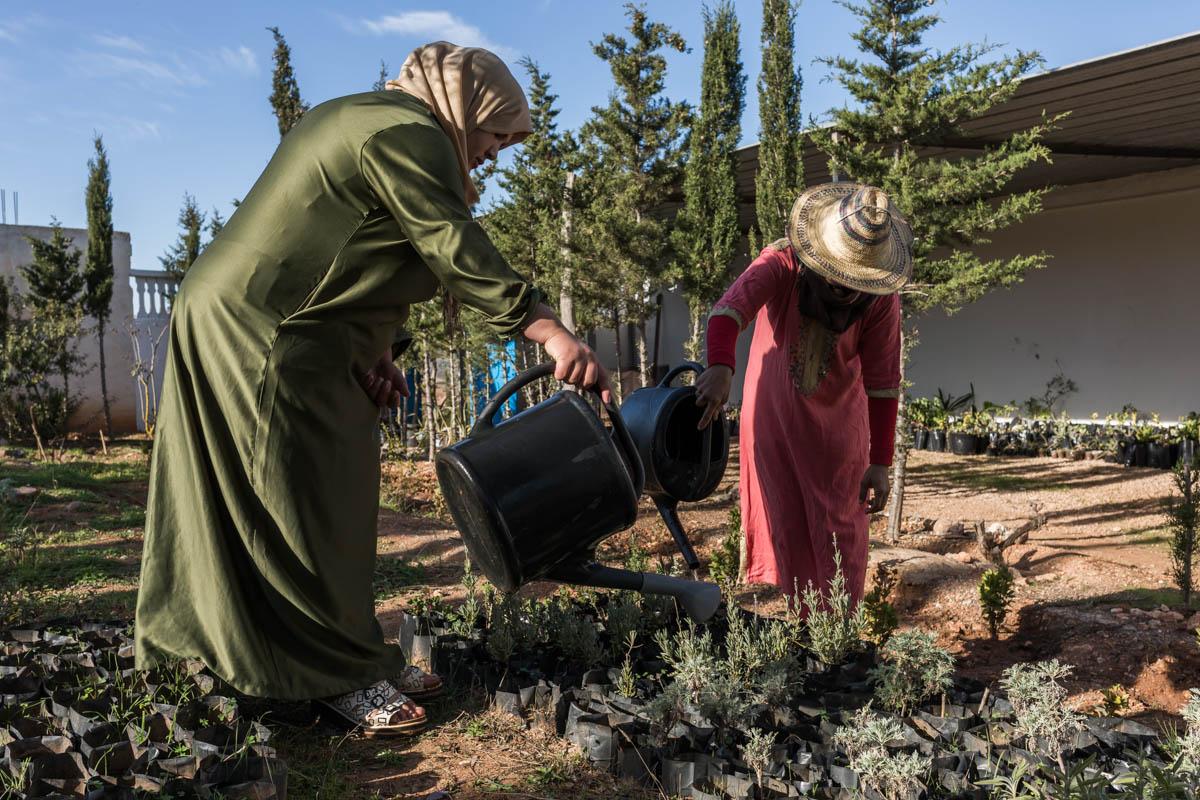 Cooperativa Vivero-Marruecos-Foto de Pablo Santana