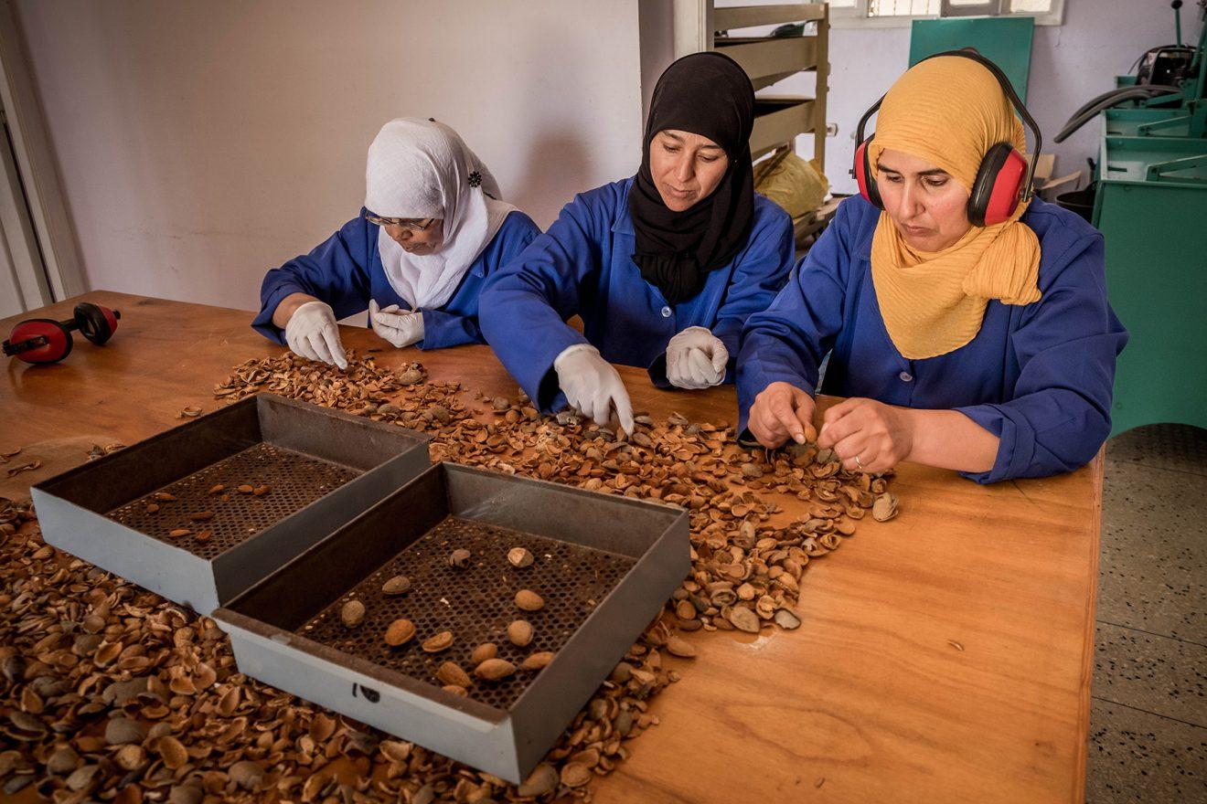 Publicación de TdR: Evaluación externa final de dos proyectos de Cooperación Internacional en Marruecos
